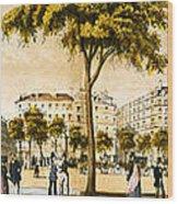 Paris 1878 Wood Print