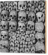 Paris Catacombs Wood Print