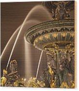 Paris Fountain Wood Print