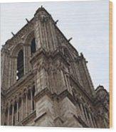 Paris France - Notre Dame De Paris - 01139 Wood Print by DC Photographer