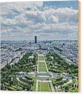 Paris From Above Wood Print
