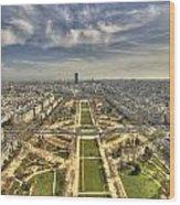 Paris From Eiffeltower Wood Print