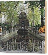 Paris Jardin Du Luxembourg Gardens Autumn Fall  - Medici Fountain Sculpture Autumn Fall Photographs Wood Print