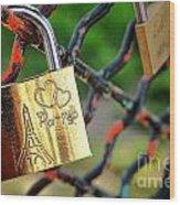 Paris Love Lock Wood Print