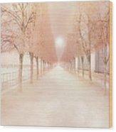 Paris Tuileries Row Of Trees - Paris Jardin Des Tuileries Dreamy Park Landscape  Wood Print