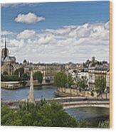Paris View Notre Dame Wood Print