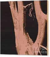Parish In The Night Wood Print