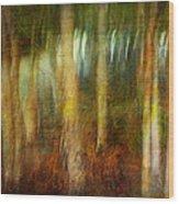 Park #8. Memory Of Trees Wood Print
