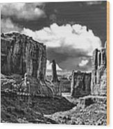 Park Avenue In Arches National Park Wood Print