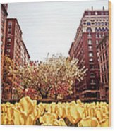 Park Avenue In The Spring  Wood Print