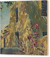 Park Avenue Pueblo Wood Print by Chris Brandley