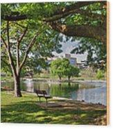 Park Bench By A Lake Wood Print