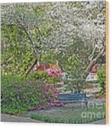 Park Bench Painting Wood Print