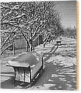 Park Benches Snow Upholstered Wood Print