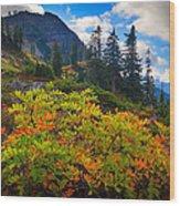 Park Butte Fall Color Wood Print