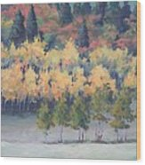 Park City Meadow Wood Print