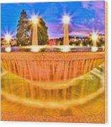 Park Fountain Wood Print