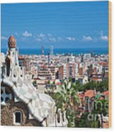 Park Guell Barcelona Wood Print