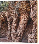 Park Guell Colonnade No1 Unframed Wood Print