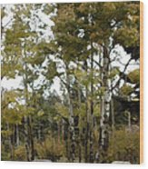 Park It There Wood Print