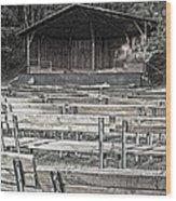Park Pavilion Stage Wood Print