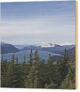 Park Ridge Views Wood Print