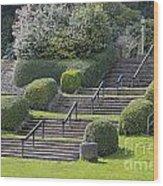 Park Stairs Wood Print