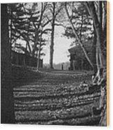 Park Stroll Wood Print by Richie Stewart