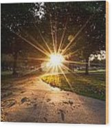 Park Sunburst Portrait Wood Print