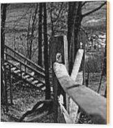 Park Trail Bw Wood Print