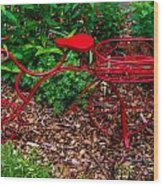 Parked Red Bicycle Wood Print
