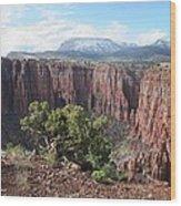 Parker Canyon In The Sierra Ancha Arizona Wood Print