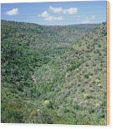 Parkland Savannah Wood Print