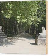 Parkway Chateau Chenonceaux  France Wood Print