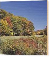 Parkway Road In North Carolina Wood Print