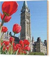 Parliament Hill, Ottawa Wood Print