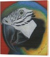 Parrot 1 Wood Print