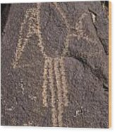 Parrot Glyph At Petroglyph National Monument Wood Print