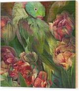 Parrot In Parrot Tulips Wood Print