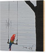 Parrot On A Swing Wood Print