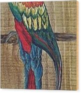Parrot - Scarlet Macaw Wood Print