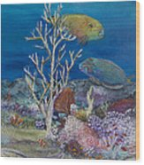 Parrots Of The Reef Wood Print