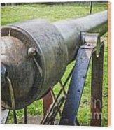 Parrott Rifle Wood Print