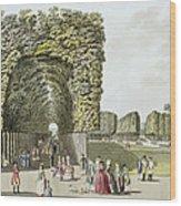 Part Of The Garden At Ausgarten Wood Print