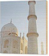 Partial View Taj Mahal Wood Print