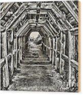 Partington Cove Tunnel By Diana Sainz Wood Print