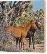 Partners - Wild Horses Wood Print