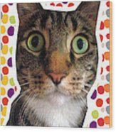 Party Animal- Cat With Confetti Wood Print