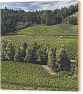 Party Clouds Over The Vineyards Wood Print