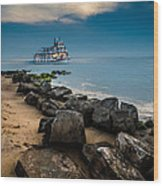 Party Cruise Wood Print